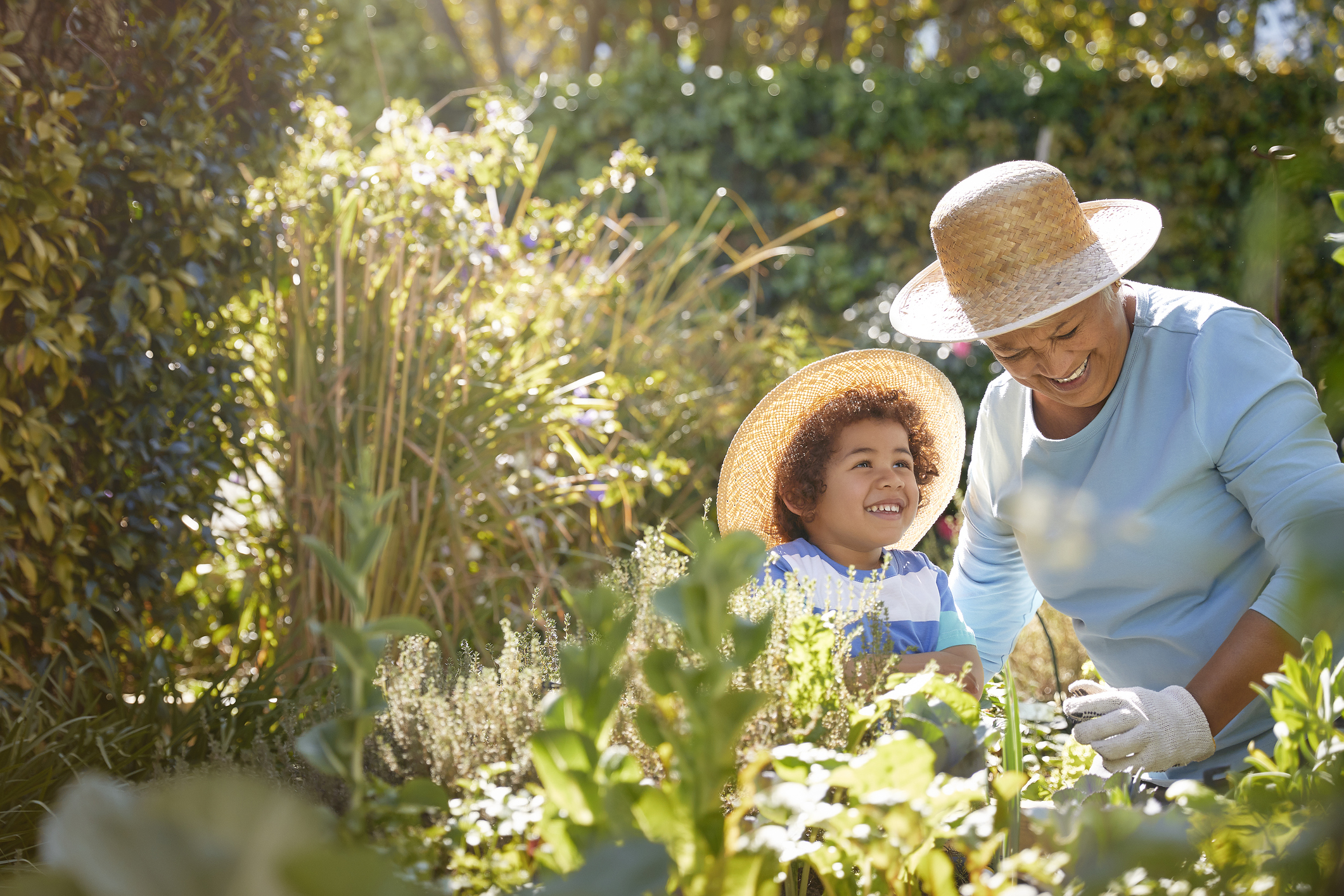 Grandmother and child gardening outdoors